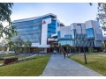 griffith-university-small-2