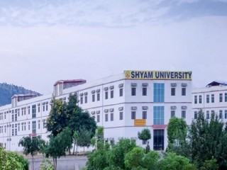 SHYAM UNIVERSITY, DAUSA
