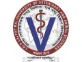 college-of-veterinary-sciences-small-0