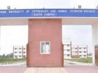 COLLEGE OF VETERINARY & ANIMAL SCIENCE