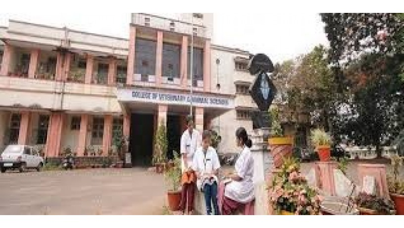 college-of-veterinary-and-animal-sciences-big-1