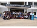 national-research-centre-on-mithun-small-1