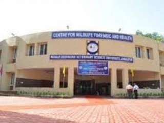 COLLEGE OF VETERINARY SCIENCE AND ANIMAL HUSBANDRY, DESHMUKH VETERINARY SCIENCE