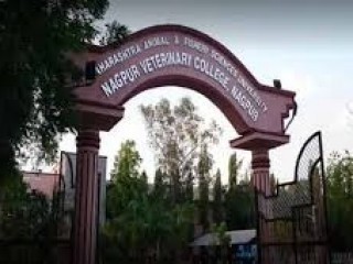 NAGPUR VETERINARY COLLEGE